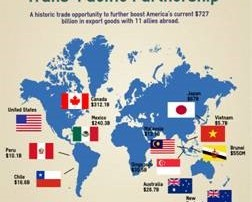 TPP Export Graphic