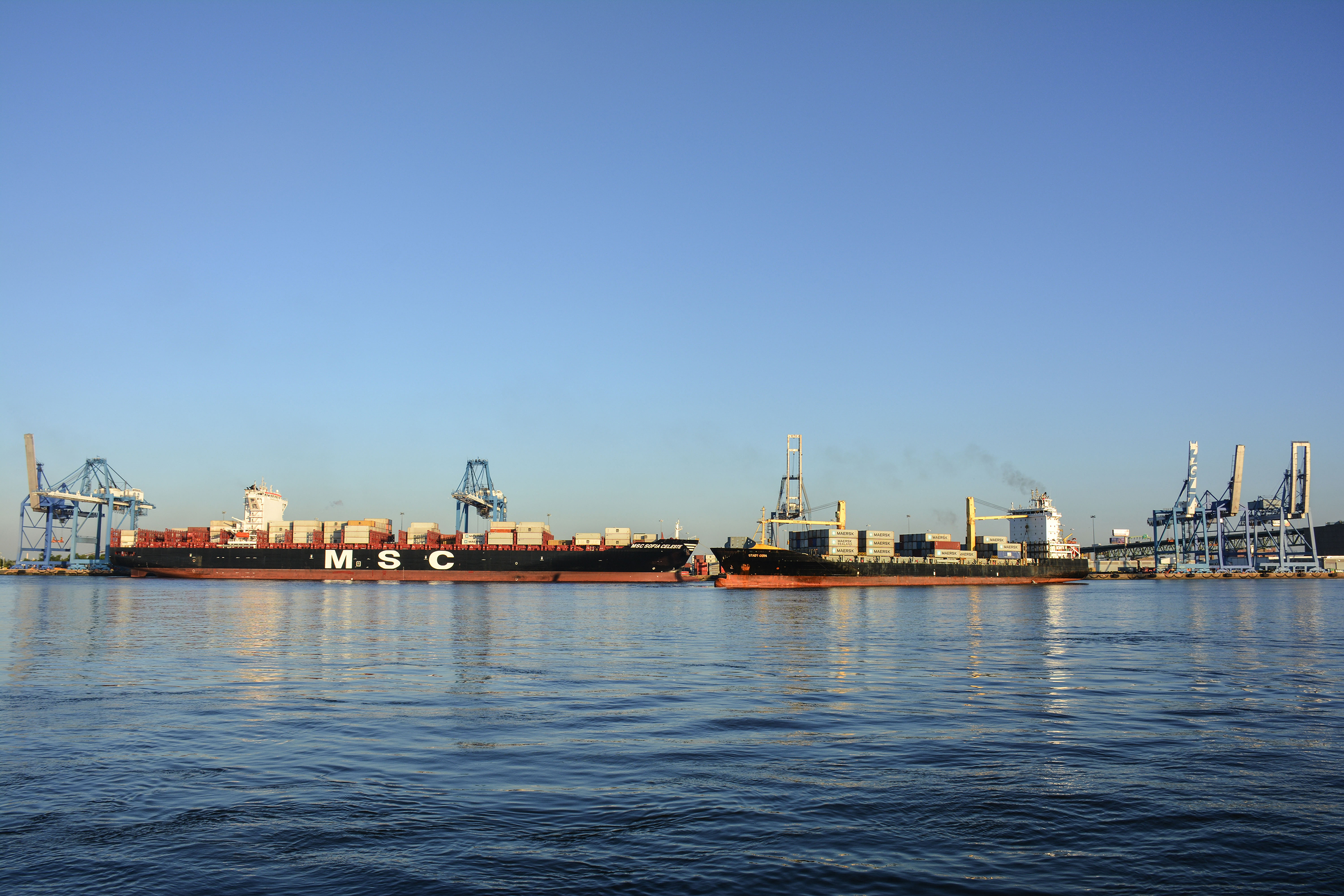 MSC Sofia Celeste (left), SeaLand Stadt Gera (right) - at Port Philadelphia's Packer Avenue Marine Terminal