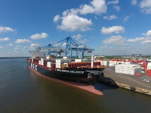 MSC Sofia Celeste at Packer Avenue Marine Terminal (8-3-16)